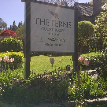 The Ferns Guesthouse sign in Spring